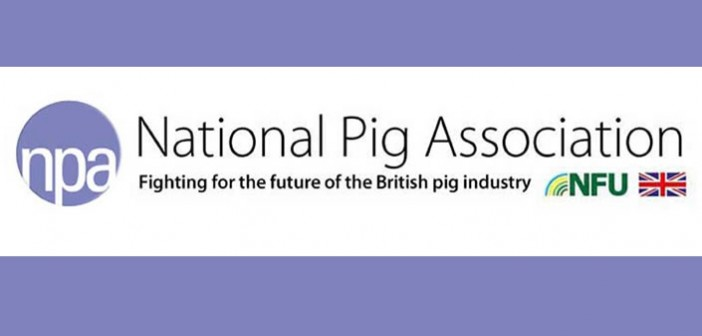 Freedom to modernise is vital for the future of family pig farms