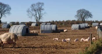 Summer and winter benefits claimed by pig ark company