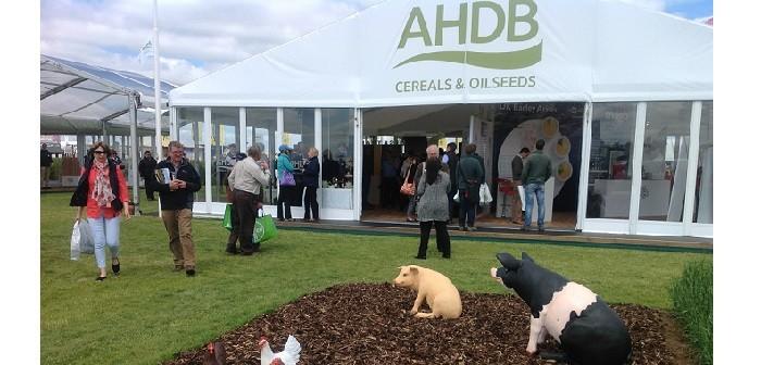 AHDB pigs cereals