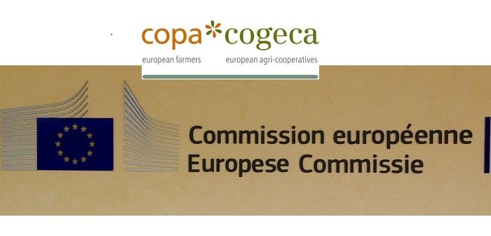 EC image