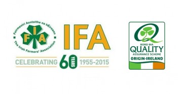 IFA Bord