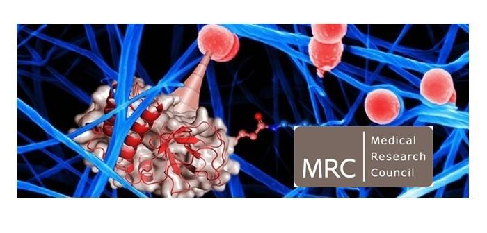 MRC harpoons