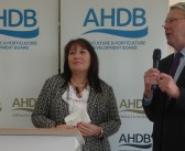 """Promotional sign-off process is """"not straightforward"""" says AHDB"""