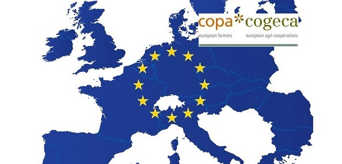 "Copa-Cogeca identifies ""good news"" for livestock and feed sectors"