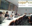 Copa pig group