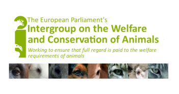 animal-welfare-intergroup 2