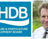 Adam Quinney fills AHDB's beef and lamb hot seat