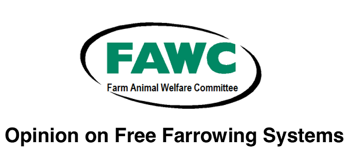 Free farrowing report recommends progress review in five years