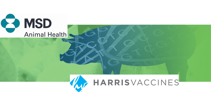 MSD Harrisv takeover