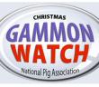 NPA Gammon watch