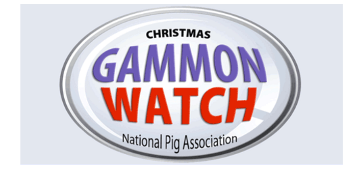 NPA Gammon watch