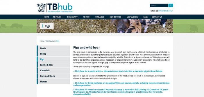 TB hub