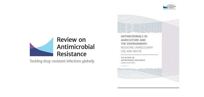 AMR review cover shot