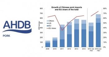AHP China Jan 25