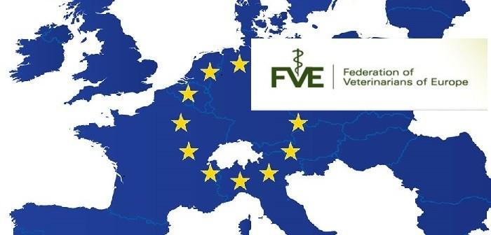 EC FVE