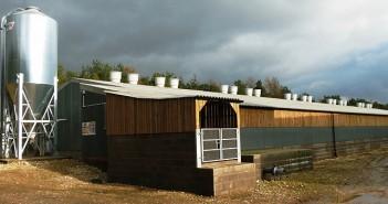 GC900_Fimber_building
