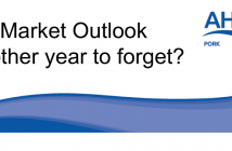 AHP Outlook header