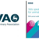 BVA report Feb 15
