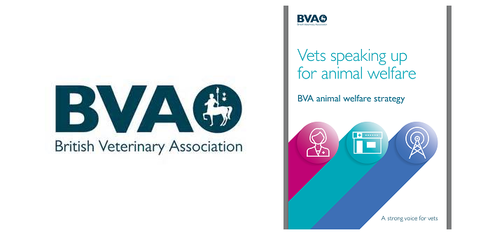 """""""Vets speaking up for animal welfare"""" launched by BVA"""