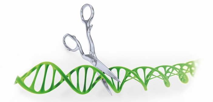 1603-Gene_editing-shutterstock