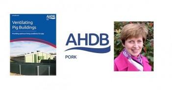 AHDB Rabbich guide