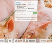 One year on, uptake to eMB-pigs hits 60%