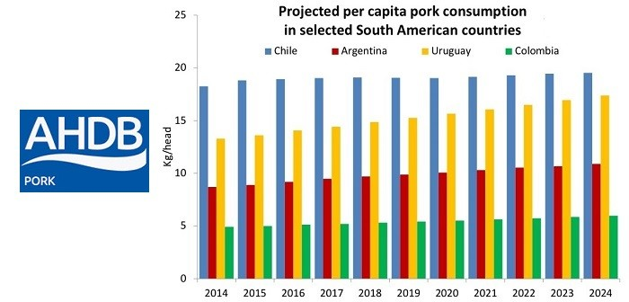 Potential export opportunities for EU in Latin America