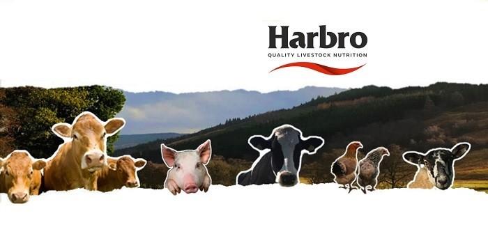 Harbro image