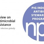 NPA + AMR review