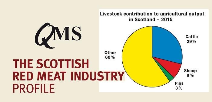 QMS profile report June 20
