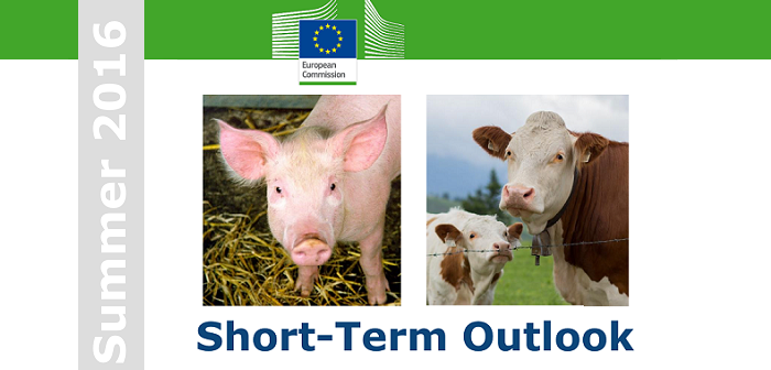 EC short term outlook image - Copy