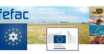 Fefac + EC