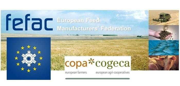 Fefac Copa EC