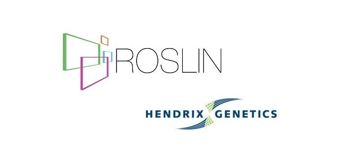 Roslin Hendrix Sept 2016