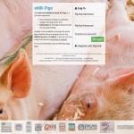 eMB-Pigs