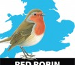 Column-Red_Robin