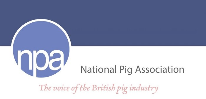 NPA labour survey