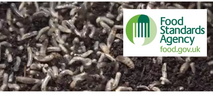 FSA + Insects
