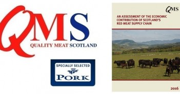 QMS red meat report