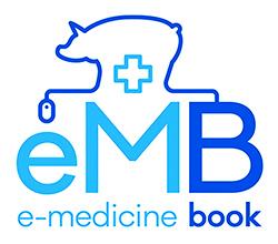 eMB final logo