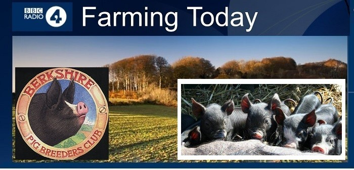 FARMING today Dec 2