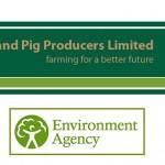 Midland Pigs