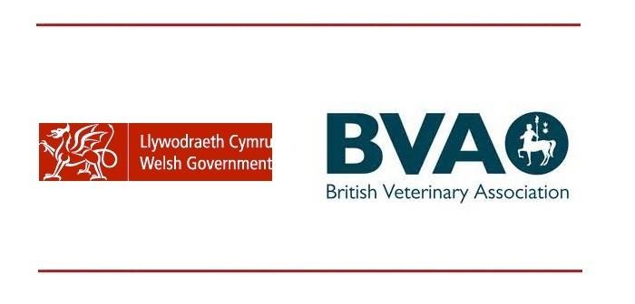 Welsh Govt + BVA