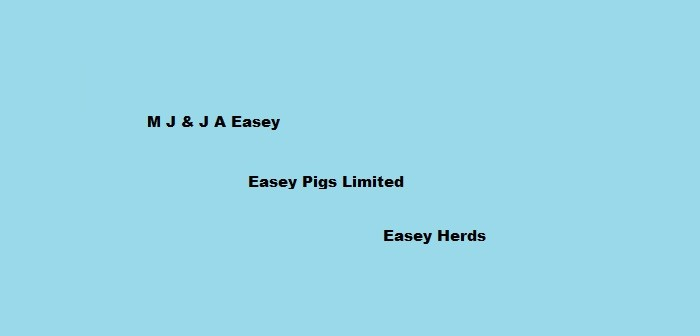 Easey Pigs