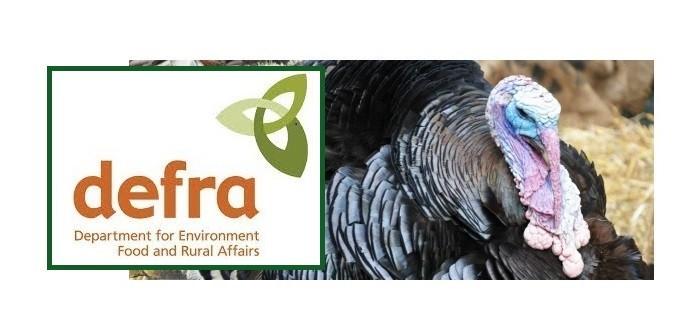 AI-turkey-Defra-700x336