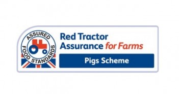 Red Tractor pig pic Feb 15