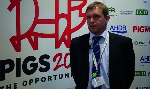 Asger Krogsgaard, Danish Crown deputy chairman