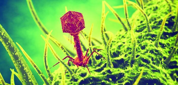 Bacteriophage virus 3d illustration (1024x768)