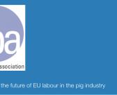 NPA launches new EU labour survey to inform post-Brexit policy