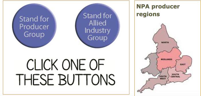 NPA elections